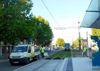 Technivert réalise l'arrosage automatique du Tramway de Bordeaux (33)
