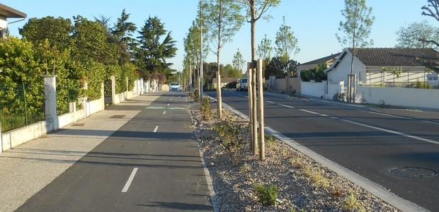 Conseil de d cembre pour plantation et lagage technivert for Reglementation elagage des arbres