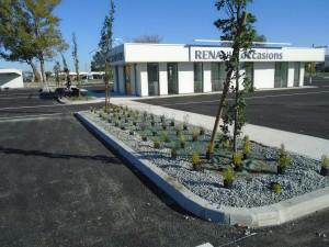 technivert-actualité-espace-vert-renault-bruges-arbuste