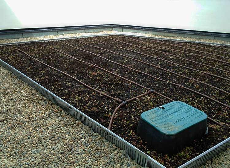 Toiture végétalisée pour le centre de Thalassothérapie à Arcachon (33)