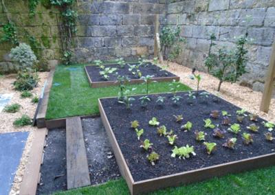 Technivert réalise un jardin à thèmes à Bordeaux (33)