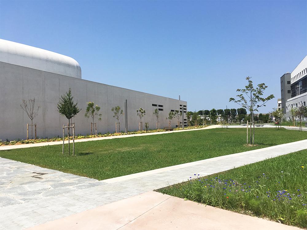 plantations-arbres-technivert