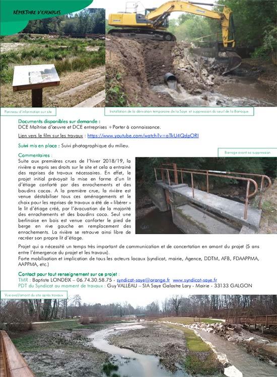 Continuité écologique cours d'eau de la Saye par TECHNIVERT