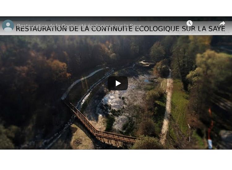 Film continuité écologique du cours d'eau de la Saye